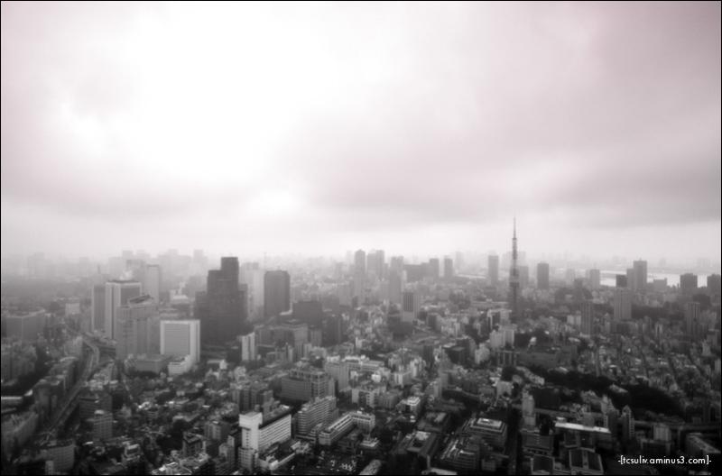 tokyo grey 東京グレー