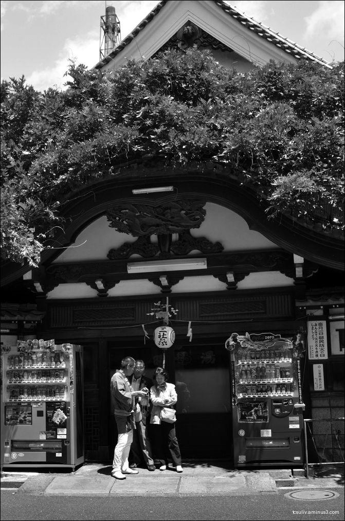 Sanjya Matsuri (Asakusa)
