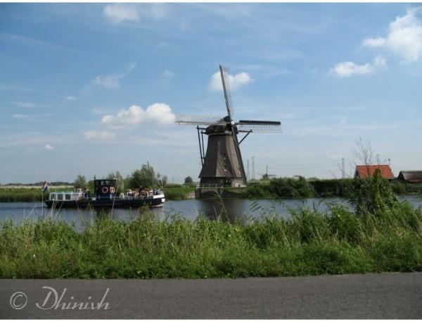 Windmills #5