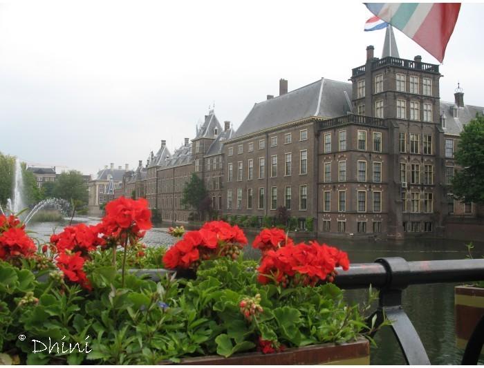 Den Haag serie 5