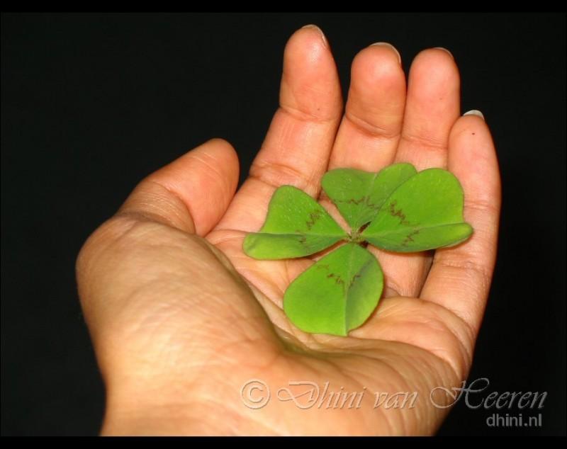 Lucky me ;)