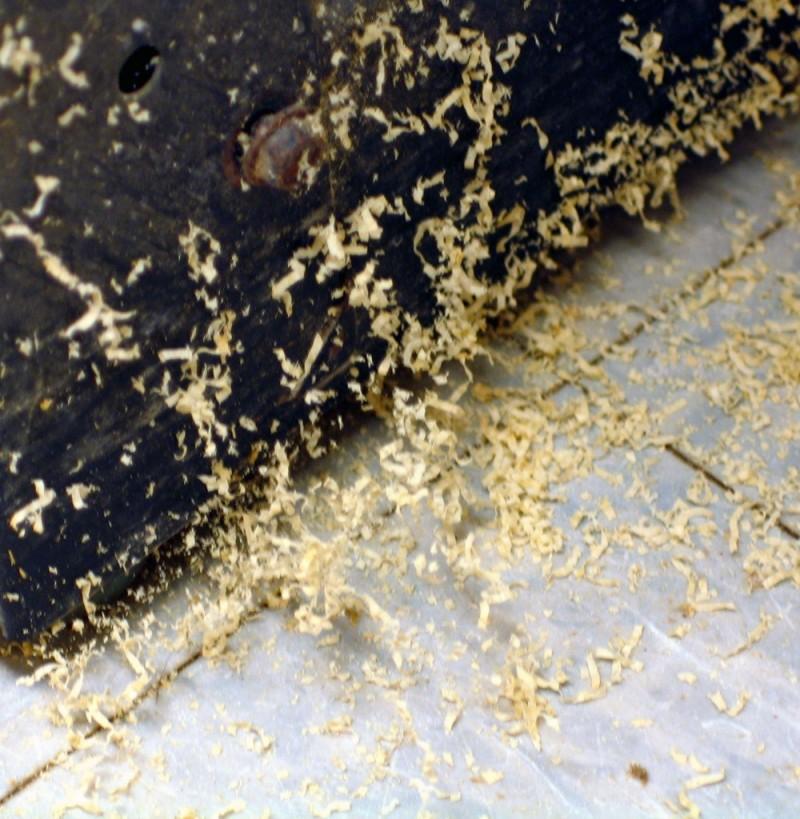 sawdust and cobwebs