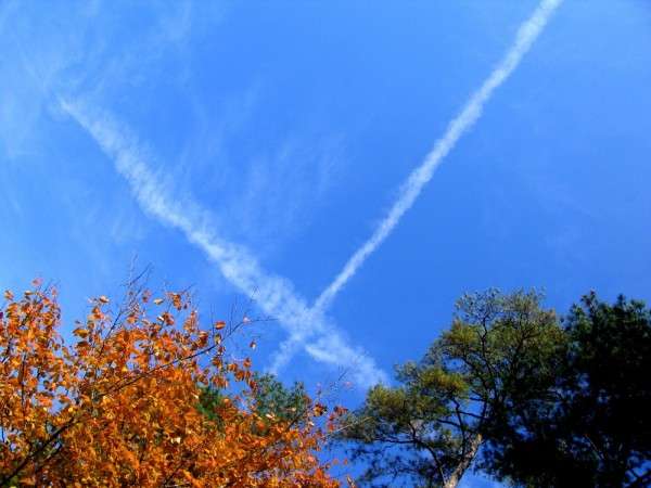 x out the sky
