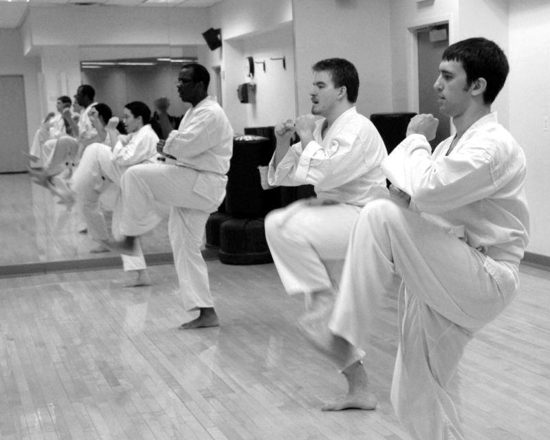 goju-ryu karate: mae geri