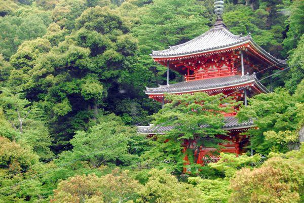 temple on 金華山/mt. kinka