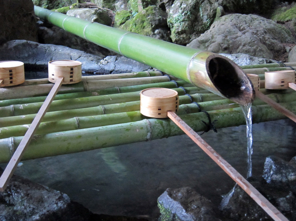 bamboo purification