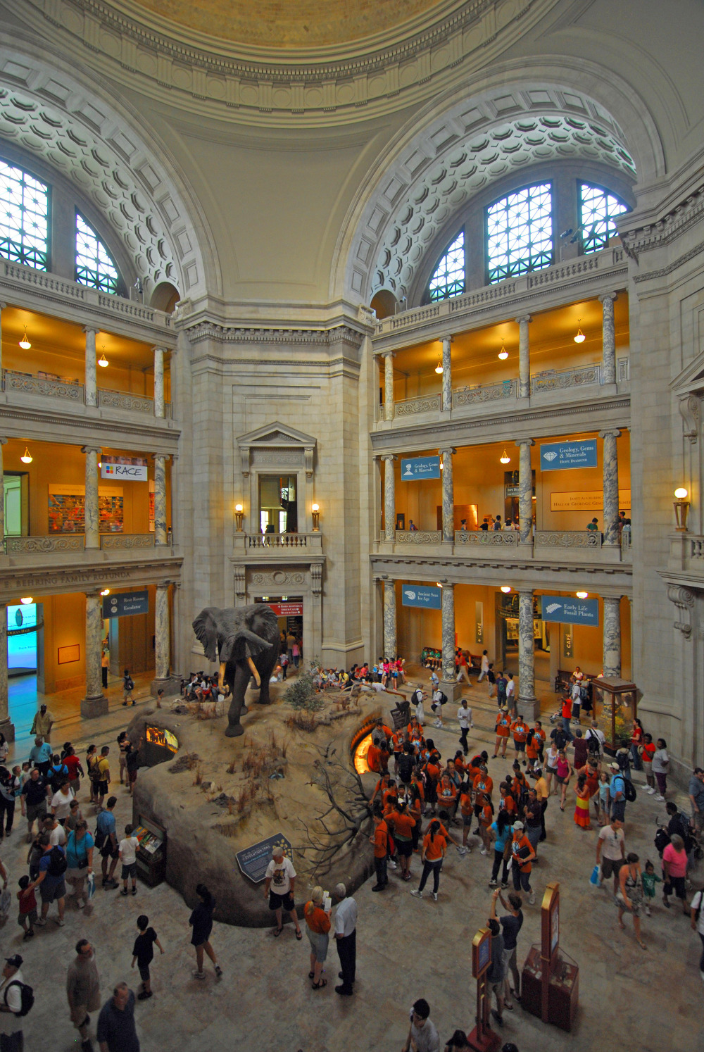 the smithsonian nmnh