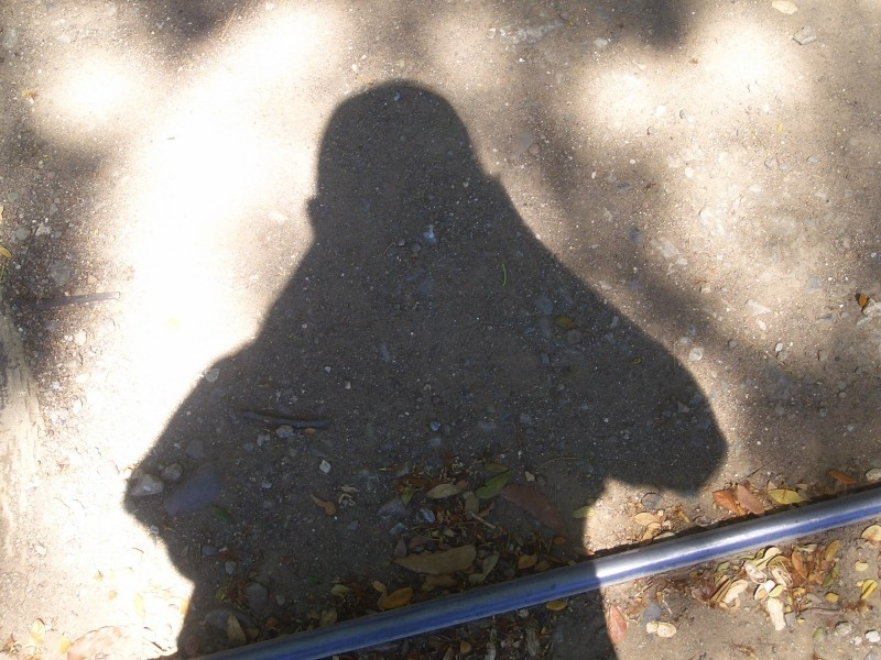 shadow of me