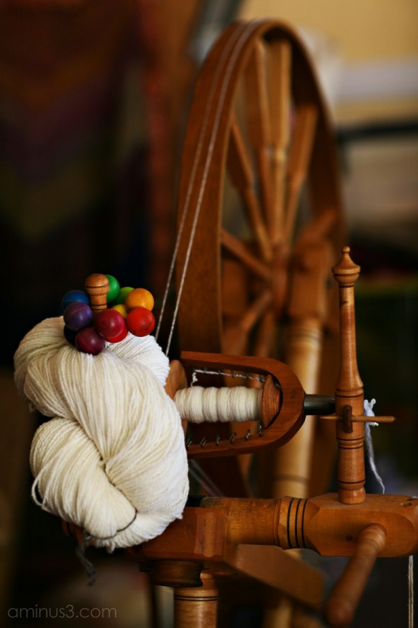 Sheep to Spun Wool