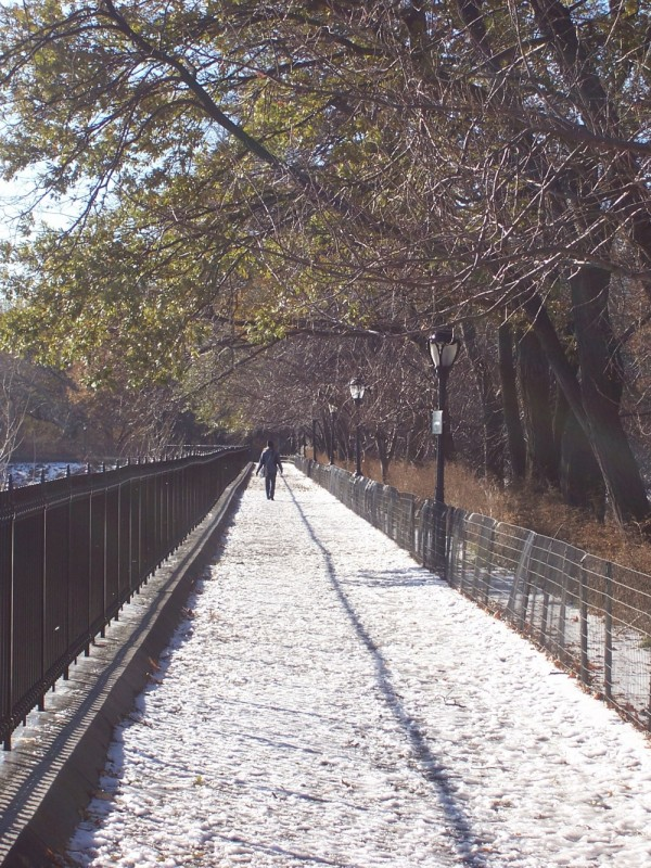 wanderer central park new york nyc snow