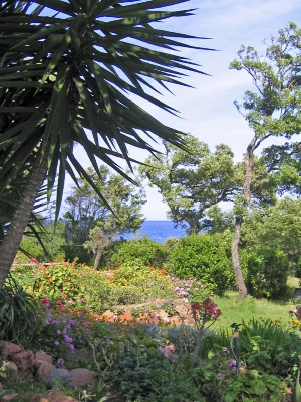jardin d'eden (2)