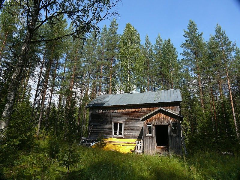wooden house in the Finland woods