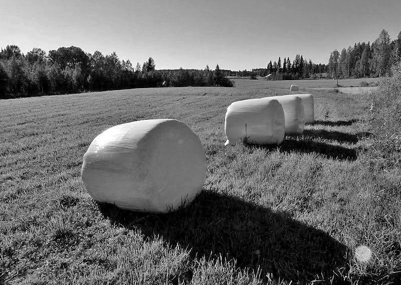 Finland bales