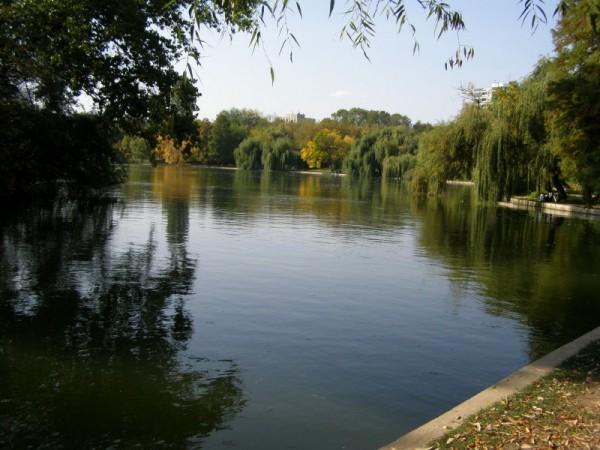 Near the lake