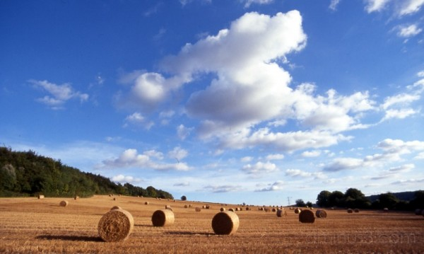 Hay Baling in the Chilterns