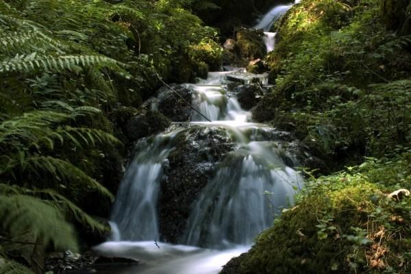 Flow at Canonteighn Falls