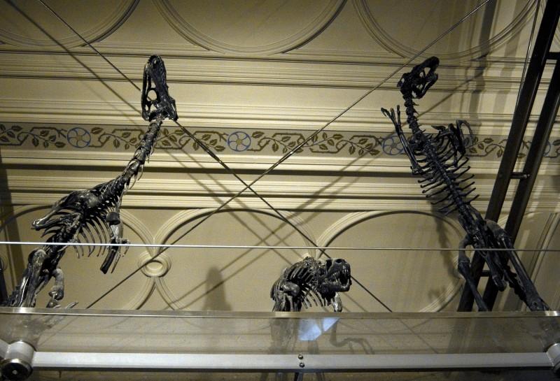 Them Bones #5