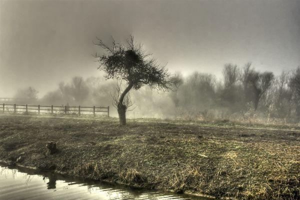 Langport, Somerset