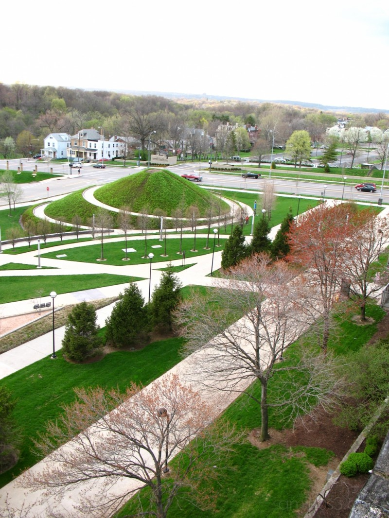 greenery, landscape