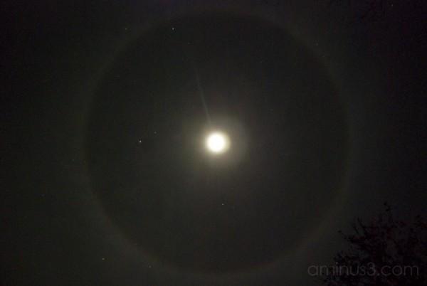 Moon Rings