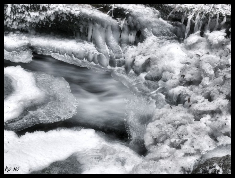Frozen brook.