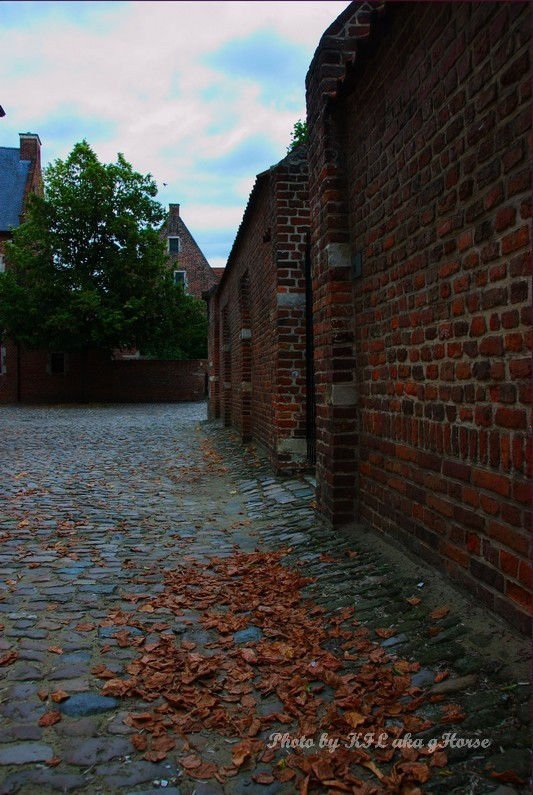 Beguinage Leuven Belgium Leaf House
