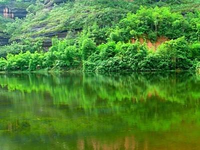 Danxia Tree Reflection Water
