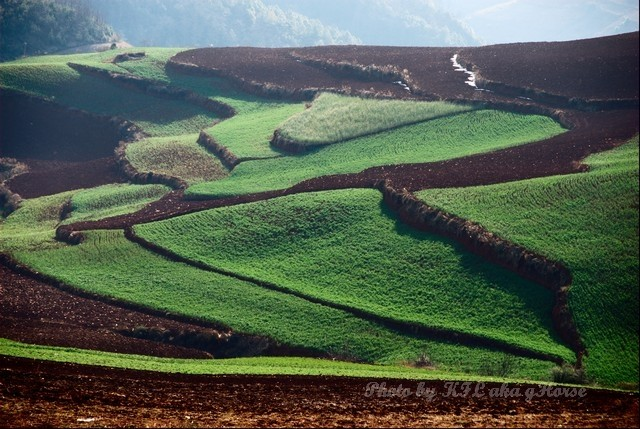 dongchuanredland redland land green