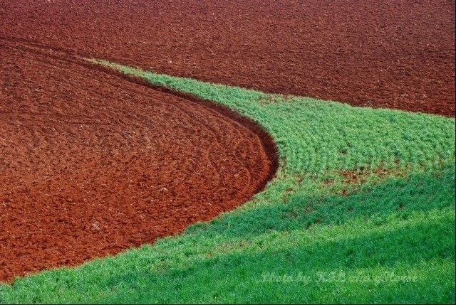 dongchuanredland redland green field