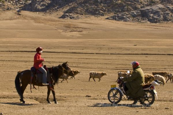 Horse, motor bike, motorcycle, wild duck lake, Xin