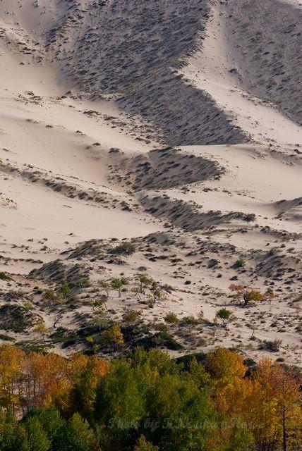 dune, sand, Xin Jiang,