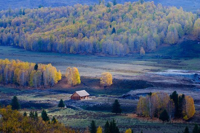 Hemu, house, ray, sun, tree, village, wood, Xin Ji