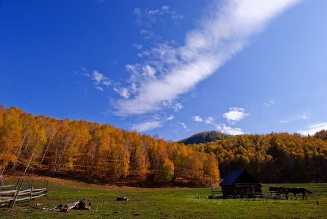 blue, cloud, Hemu, house, sky, tree, village, wood
