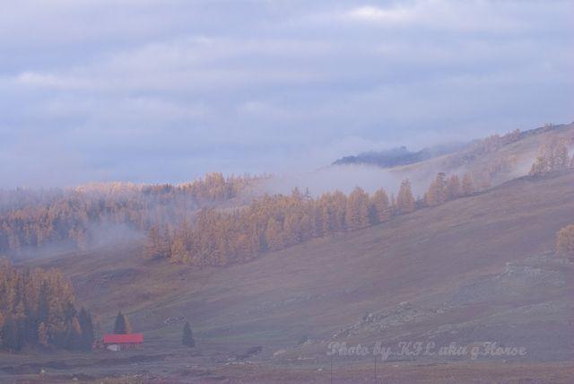 新疆, Xin Jiang, tree, mist, Hanas, 哈纳斯, house