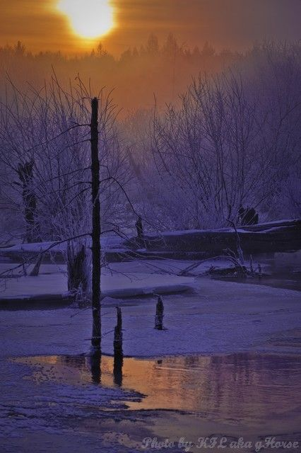 sun rise, nipple river, Jilin, 吉林, 奶头河, mist, tree