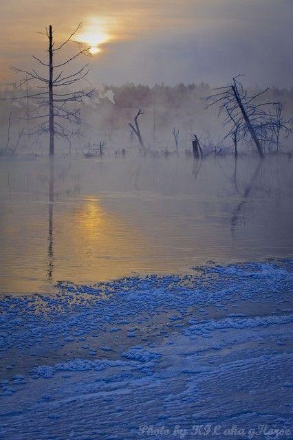 sun rise, nipple river, Jilin, 吉林, 奶头河, mist, tree