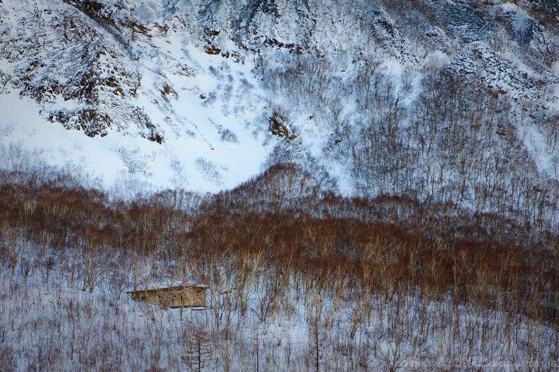 Jilin, 吉林, chang bai shan, 长白山, snow, Shadow, wood