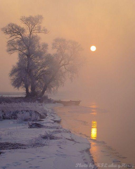 wu shong island, Jilin, 吉林, 雾从岛, tree, sun rise, r