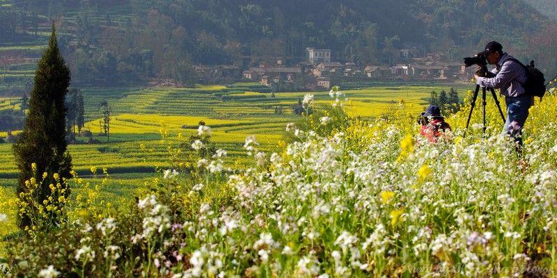 云南, 罗平, Yun Nam, Lou Ping, Spiral Field, farm land