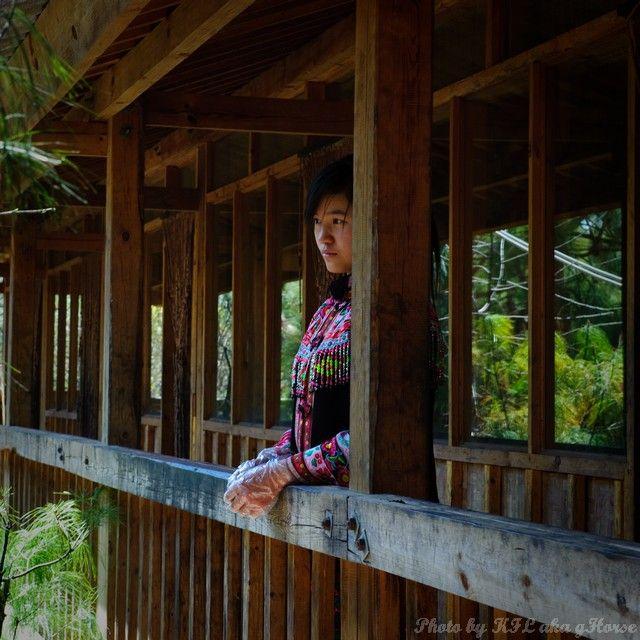 云南, 东川, 红土地, Yun Nam, Dong Chuan, redland, wood,