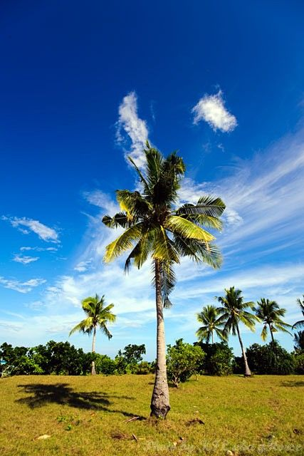 Maiga, Semporna, Malaysia, blue, sky, cloud, tree
