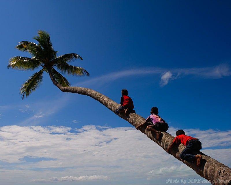 Semporna, Malaysia, blue, sky, cloud, sea, tree, c