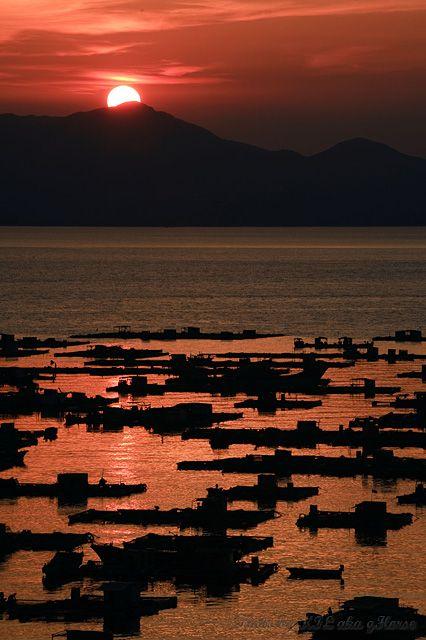 Yang, Jiang, West, Guang, Dong, harbour, sunset