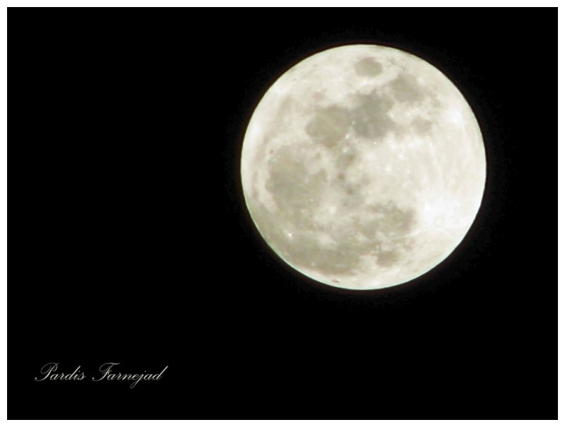 .:: The Moon ::.