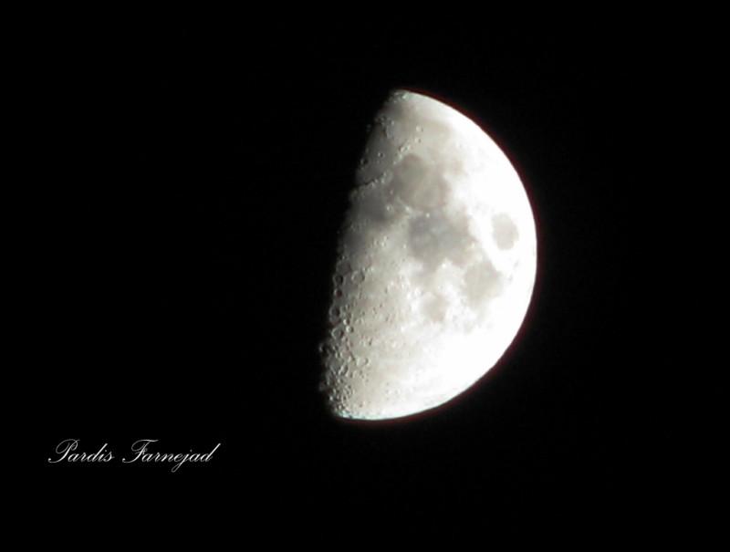 .:: The Half Moon ::.