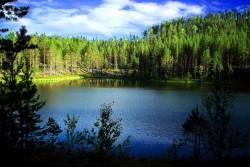 Nice Sweden