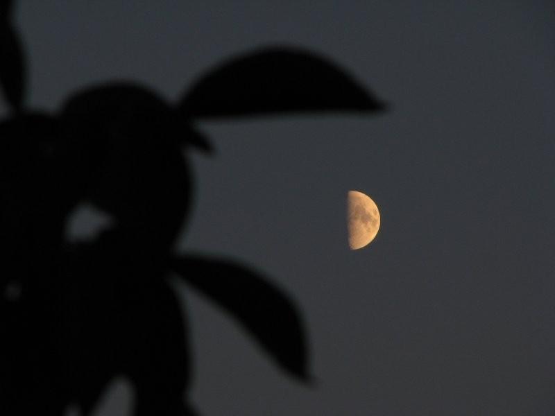 The Moon in danger!