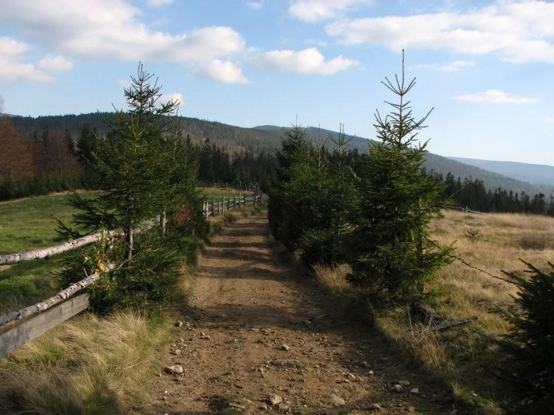 A mountain road