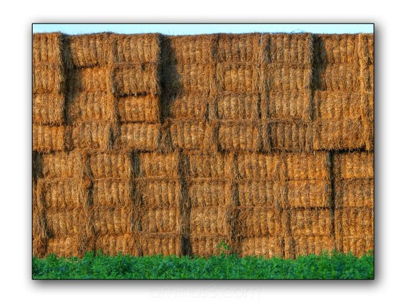 pattern straw