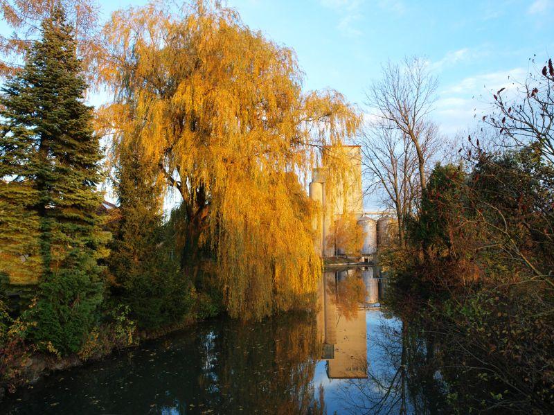 mill water autumn